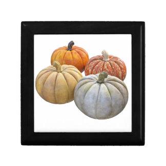A Variety of Pumpkins Small Square Gift Box