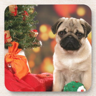 A very Merry Chinese Pug Christmas Beverage Coaster