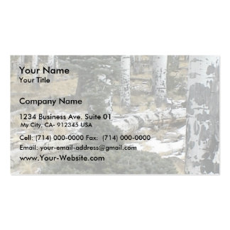 A Very Odd Blue Spruce Normal At The Top But Bush Business Cards