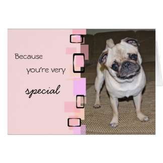 A Very Special Pug Birthday Note Card