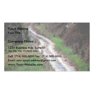 A Very Steep Country Road In The Southern Appalach Business Card Templates