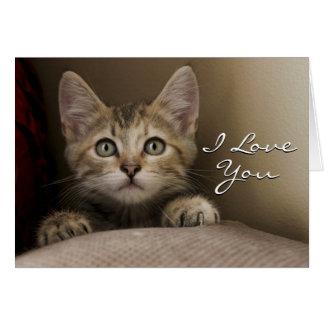 A Very Sweet Tabby Kitten Card