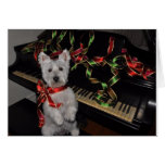 A Very Westie Christmas