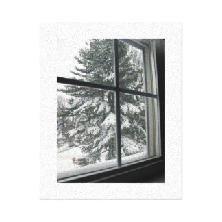 A View from a Window of a Snow Covered Evergreen Canvas Prints
