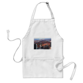 A view from above: Autumn in Central Park 01 Standard Apron