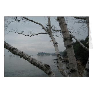 A View in Maine Greeting Card
