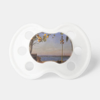 A View in the Bahamas by Bierstadt Albert. Baby Pacifiers