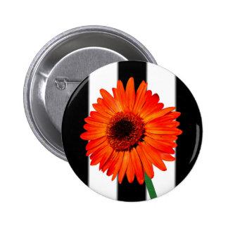 A Vivid Orange Gerbera Daisy Button
