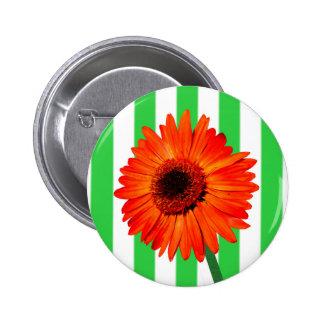 A Vivid Orange Gerbera Daisy Buttons