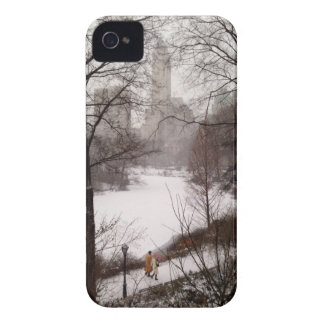 A Walk Around The Pond On A Winter Day iPhone 4 Case-Mate Cases