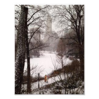 A Walk Around The Pond On A Winter Day Photo Print