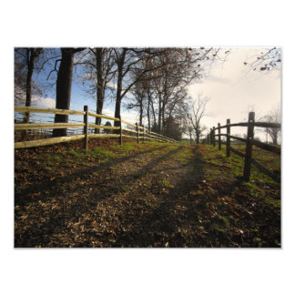A Walk Down a Country Path Photograph
