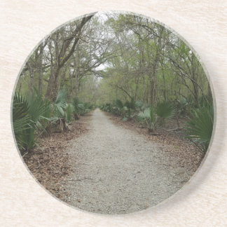 A walk in Nature Coaster