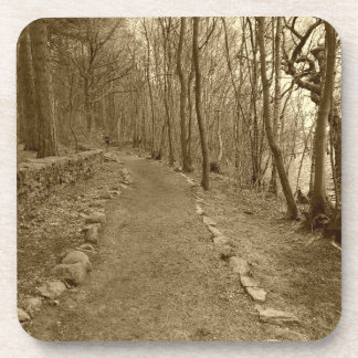 A walk in the woods at Rivington coasters