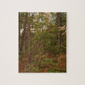 A Walk In The Woods Jigsaw Puzzle