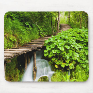 A Walk in the Woods Mouse Pad