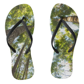 A walk in the woods thongs