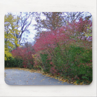 A Walk On A Beautiful Autumn Day Mouse Pad