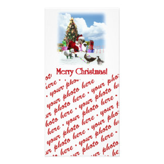 A Web Footed Christmas Photo Card Template