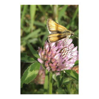 A wee moth on a wee flower customised stationery