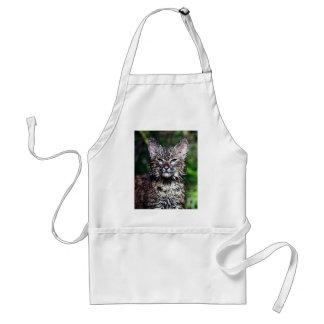 A Wet Little Bobcat Kitten Standard Apron