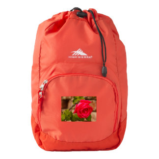 a wet rose on  High Sierra Backpack