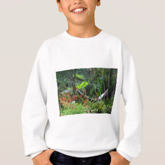 A Whistle from the Whippoorwill Sweatshirt