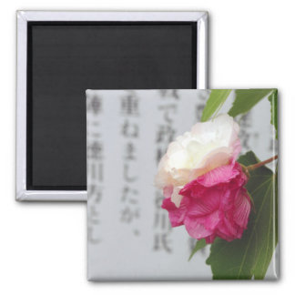 A white, a pink flower and Japanese characters Magnet