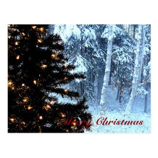 A White Christmas Postcard