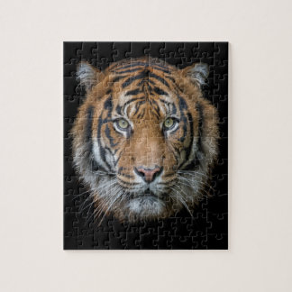A wild Bengal Tiger face Jigsaw Puzzle