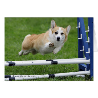 A WINK AND A WAVE AGILITY CORGI CARD