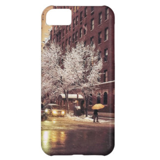 A Winter Crossing iPhone 5C Case