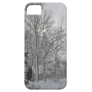 A Winter Morning iPhone 5 Cover