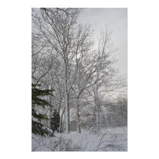 A Winter Morning Photo Art