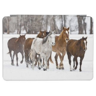 A winter scenic of running horses on The 2 iPad Air Cover