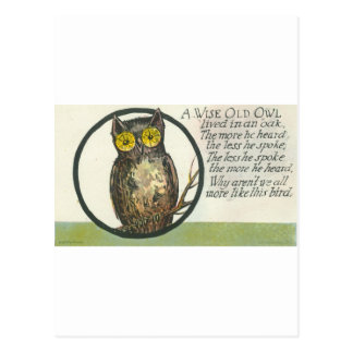 a wise old owl postcard