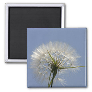 A wish flower square magnet