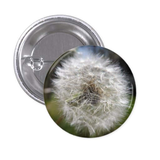 A Wish In The Making Button Button