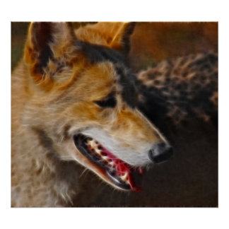 A wolfs smile posters