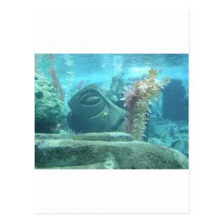 A World Underwater Postcard