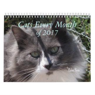 A Year of Cats 2017 - customise to any year Wall Calendar