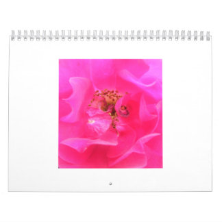 A Year of Flowers Wall Calendars