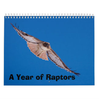 A Year of Raptors Wall Calendar