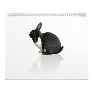 A Year of Rupert Wall Calendar