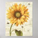 A Yellow Sunflower Poster
