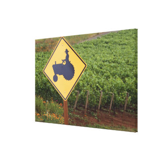 A yellow tractor crossing sign in the vineyard gallery wrap canvas