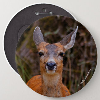 A Young Black-Tailed Deer Smiles 6 Cm Round Badge