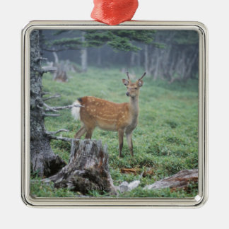 A young deer in a forest clearing metal ornament