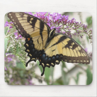 AA- Yellow Swallowtail Butterfly Mouse Pad