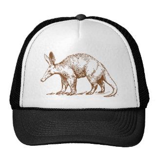 Aardvark Brown Cap
